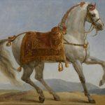 اشهر خيول الحروب عبر التاريخ