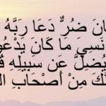 """تفسير الآية """" وإذا مس الإنسان ضر دعا ربه منيبا """""""