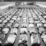 وباء الألفلونزا القاتل - 671172
