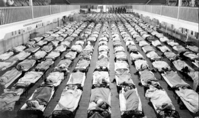 وباء الألفلونزا القاتل