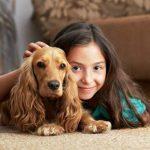 أسباب وأعراض الحساسية من الكلاب وطرق علاجها