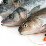 فوائد زيت السمك لصحة الأسنان
