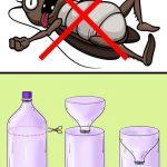 طرق التخلص من حشرات المنزل بجميع أنواعها بلا رجعة