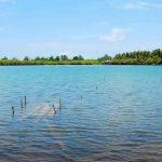 جولة إلى بحيرة جيلي مينو المالحة وغابة المانغروف