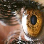 هل الكوليسترول يؤثر على العين ومستوى الابصار