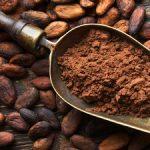 فوائد تناول الكاكاو يوميا