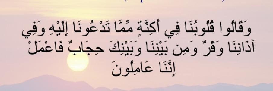 كتاب فصلت آياته قرآنا عربيا لقوم يعلمون