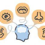 العلاقة بين الحساسية واضطراب طيف التوحد