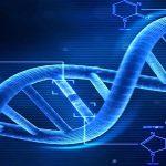 الاختبارات الجينية قبل الحمل