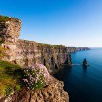افضل امثال وحكم ايرلندية
