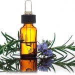 نبذة تاريخية عن العلاج بالأعشاب