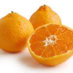 فوائد تناول برتقال ساتسوما بانتظام للانسان