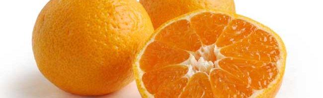 فوائد اكل البرتقال يومي %D8%A8%D8%B1%D8%AA%D9%82%D8%A7%D9%84-%D8%B3%D8%A7%D8%AA%D8%B3%D9%88%D9%85%D8%A7-650x198