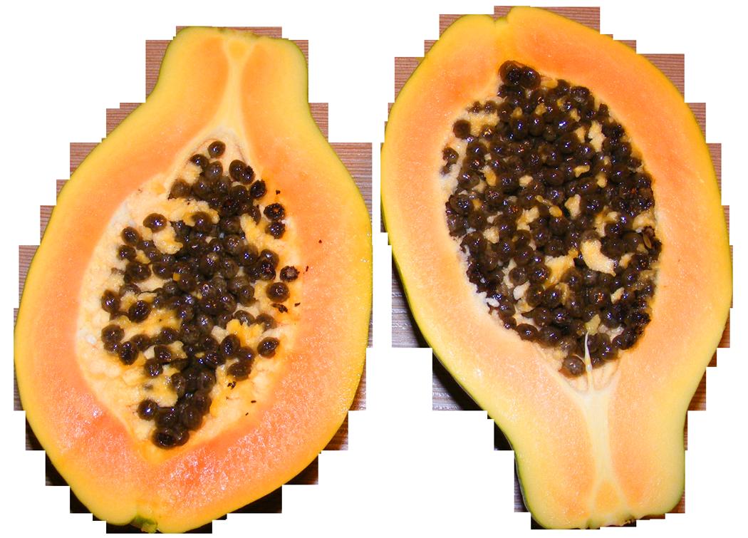 papaya png - 1050×755