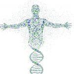 العلاقة بين الوراثة والبكتيريا المقاومة للمضادات الحيوية