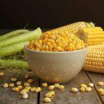 فوائد و أضرار تناول حبوب الذرة أثناء الحمل