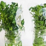 كيفية حفظ الأعشاب الخضراء طازجة