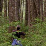 أغرب ما تم اكتشافه في الغابات بالصور