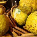 """فوائد الفاكهة القبيحة """" ugly fruit """" لمرضى السكري و ضعف المناعة"""