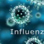 """رموز و اسماء """" فيروسات الانفلونزا """" و اكثر الانواع انتشاراً"""