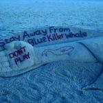 طرق حماية الابوين لأطفالهم من لعبة الحوت الأزرق
