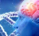 العلاقة بين مرض السكري و فقدان الذاكرة