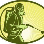 أفضل شركات مكافحة الحشرات بالمدينة المنورة