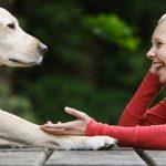 لماذا لا تتحدث الحيوانات مثل البشر
