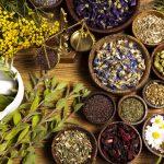 الأعشاب الطبية