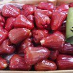 فوائد التفاح السكري التايلندي