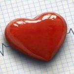 الوقاية من أمراض القلب ومتابعتها في كل مرحلة عمرية