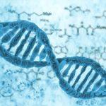 فقر الدم الوراثي وكيفية علاجه