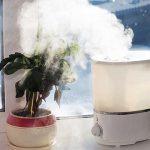 فوائد استخدام مرطب الهواء في الشتاء