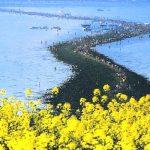 انشقاق بحر چيندو