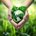 اهمية البيئة في حياة الانسان