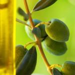 فوائد زيت الزيتون للقولون