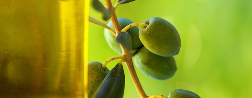فوائد زيت الزيتون للقولون %D8%B2%D9%8A%D8%AA-%