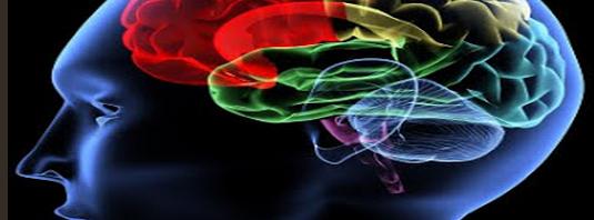 تعريف علم النفس الفسيولوجي %D8%B9%D9%84%D9%85-%D8%A7%D9%84%D9%86%D9%81%D8%B3-%D8%A7%D9%84%D9%81%D8%B3%D9%8A%D9%88%D9%84%D9%88%D9%84%D8%AC%D9%8A-535x198