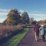 بحث عن دار المسنين