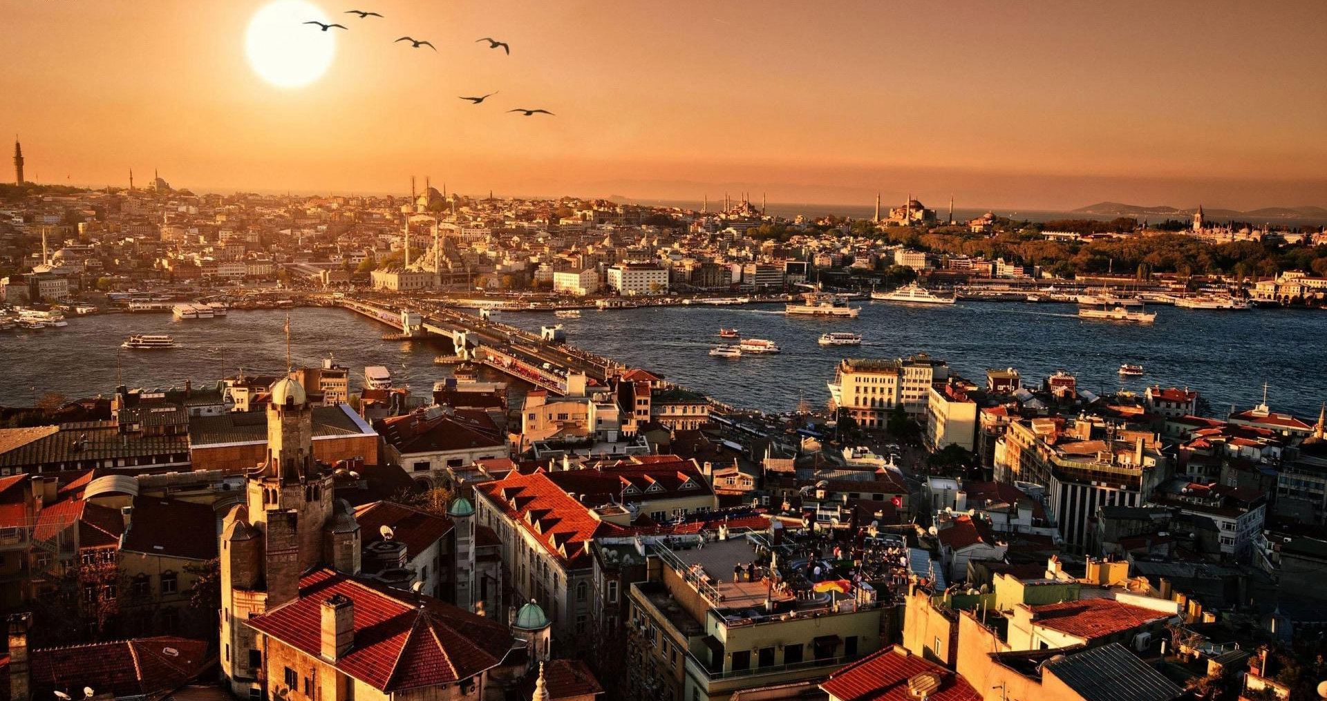 ما هي مساحة دولة تركيا المرسال