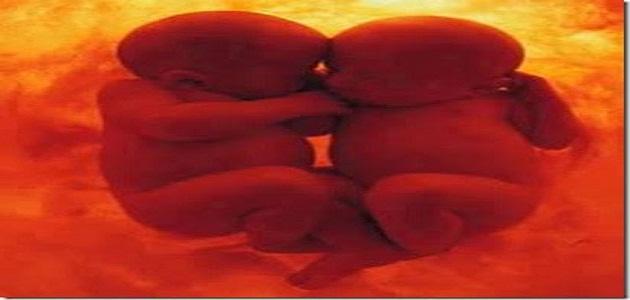 الفرق بين حمل التوأم والواحد المرسال