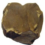 ما هو الصخر الزيتي