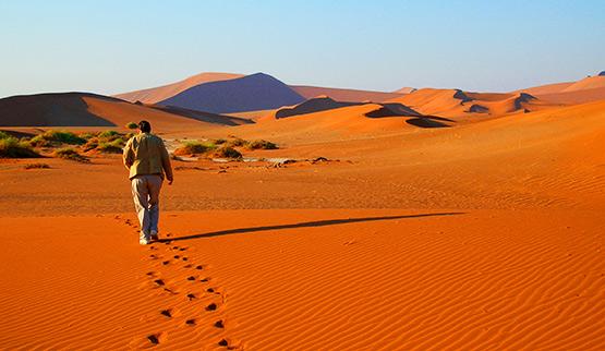 أفضل رحلات السفاري الإفريقية ناميبيا.jpg