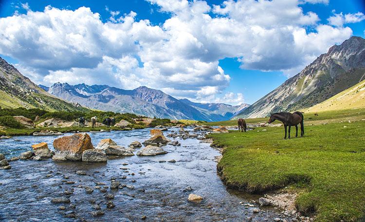 السياحة قرغيزستان DSC0002.jpg