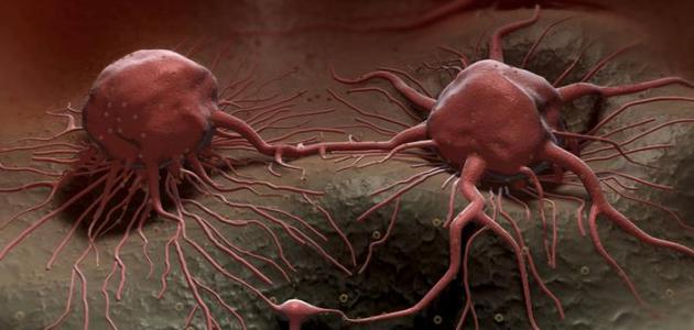 أثر المواد الكيميائية المسرطنة في انقسام الخلايا وتكاثرها المرسال