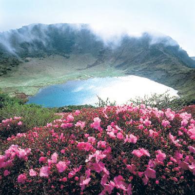 جزيرة جيجو jeju island