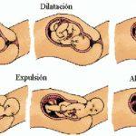 ما الاعراض المنذرة للولادة للام الحامل
