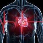 قائمة الامراض التي تصيب القلب