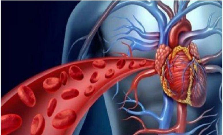 الفرق بين تصلب الشرايين وارتفاع ضغط الدم ارتفاع-ضط-الدم.jpg