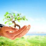 اهداف يوم البيئة الخليجي